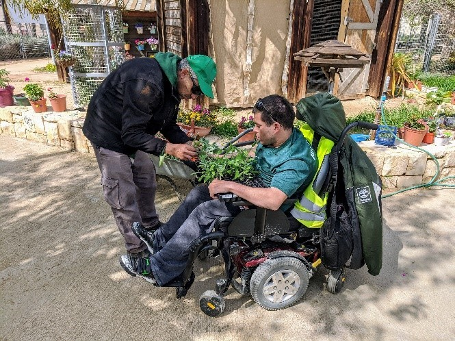 בחור בכסא גלגלים מטפל בעציצים Young man in wheelchair caring for plants